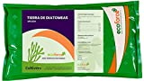 CULTIVERS Tierra de Diatomeas 1 kg Molienda. 100% Natural y...