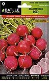 Semillas Hortícolas - Rabanito redondo rojo sel. Especial -...