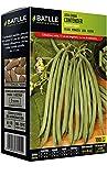 Semillas Leguminosas - Judia Enana Contender 100 Gr. -...