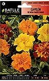Semillas de Flores - Clavelón de la India Tagete enano -...