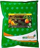 CULTIVERS Abono Ecológico Cítricos de 5 Kg. Fertilizante...