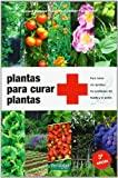 Plantas para curar plantas: Para tratar sin química los...