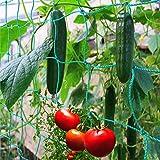 GardenGloss® Premium Red para Plantas trepadoras con Gran...