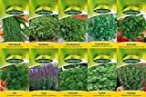 10 variedades   Surtido de semillas de hierbas   adecuado...