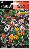 Semillas de Flores - Mezcla de Flores enanas anuales -...