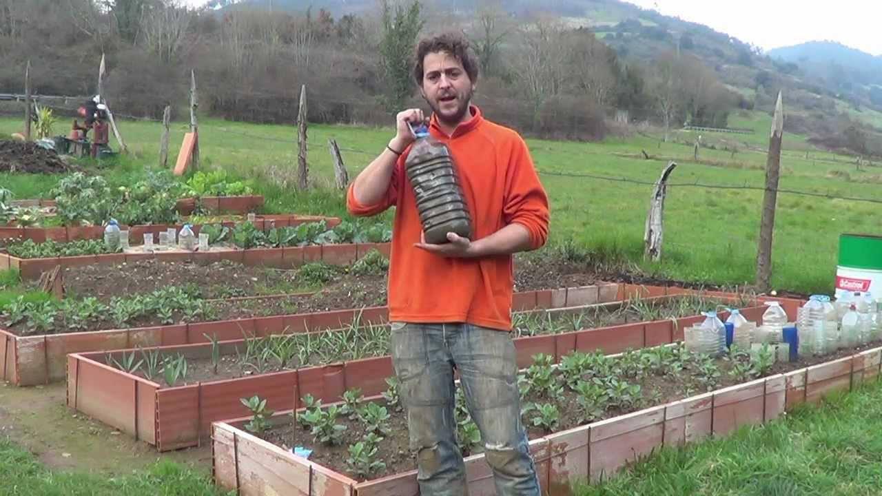 Como hacer purin de gallinaza la huertina de toni - Abono organico para plantas ...