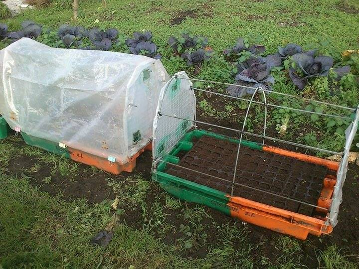 Semillero con invernadero incluido la huertina de toni - Como hacer un invernadero pequeno ...
