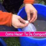 Te De Compost Titulo