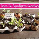 semillero recicladosTitulo