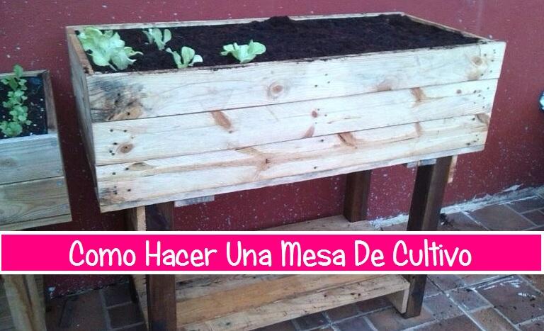 Como hacer una mesa de cultivo con palets hazlo tu mismo - Como hacer una mesa con palets ...