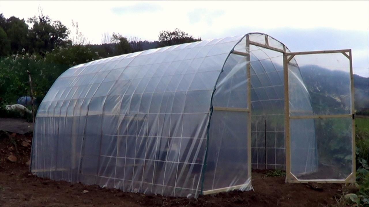 Como hacer un invernadero casero paso a paso la estructura for Vivero estructura
