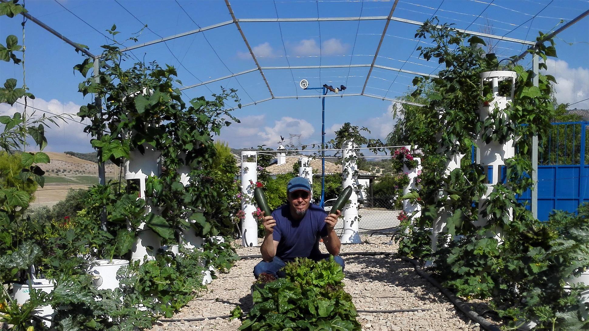 Cómo plantar hortalizas en casa sin ser un experto en el tema