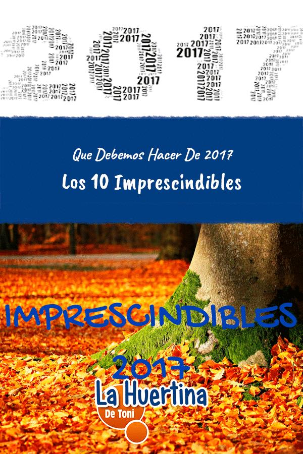 Los 10 Imprescindibles Que Debemos Hacer De 2017