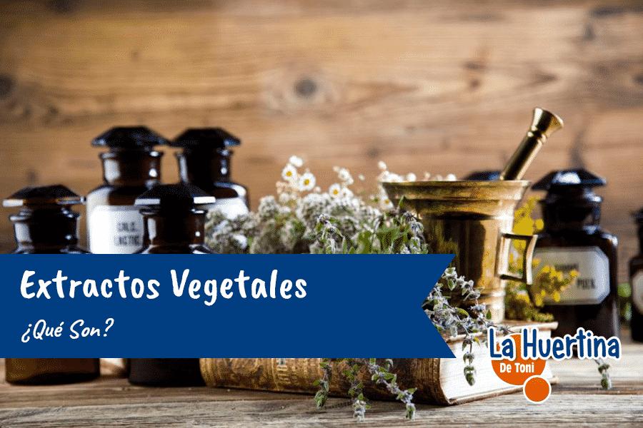 Que Son Los Extractos Vegetales
