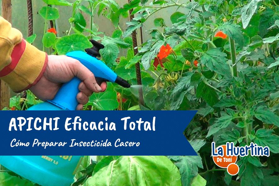 Como Preparar Insecticida Casero APICHI Eficacia Total