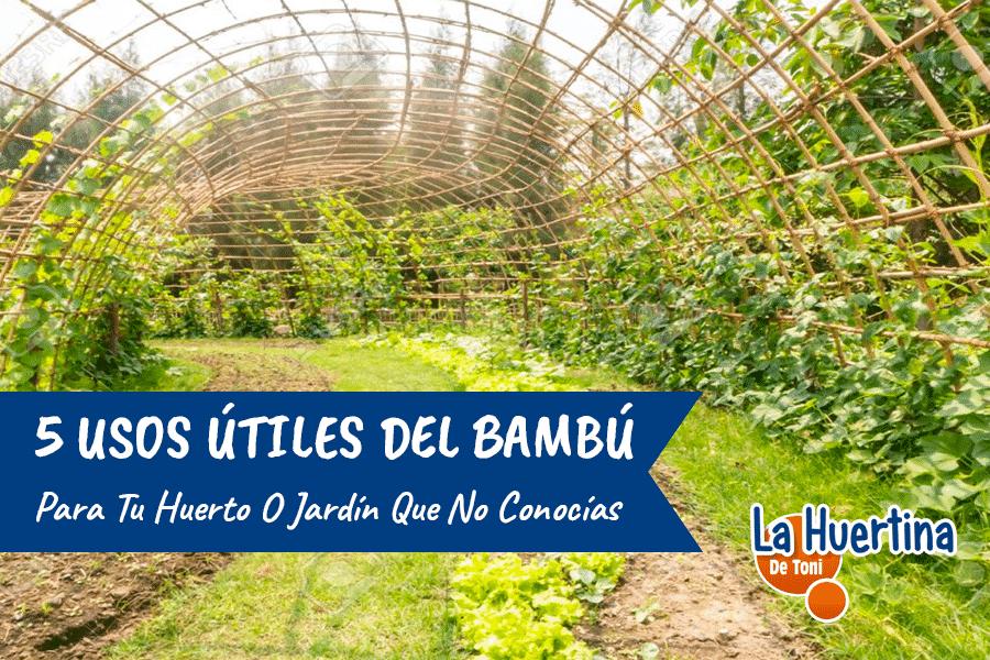 5 usos del Bambú en la Huerta que no Conocías