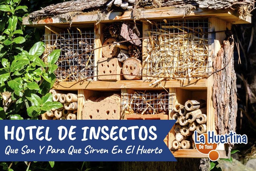 Que Son Y Para Que Sirve Un Hotel De Insectos O Bichotel