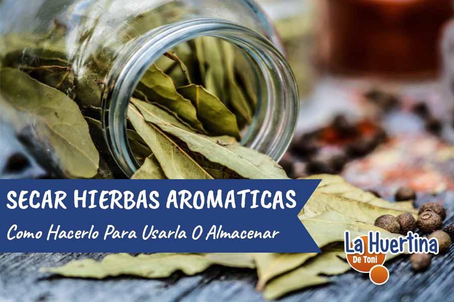 Como secar Hierbas Aromáticas y Medicinales para almacenar