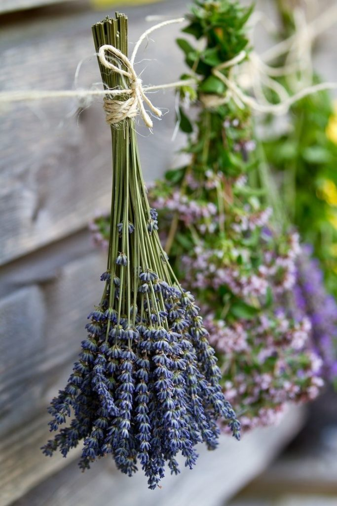 How to dry herbs fast