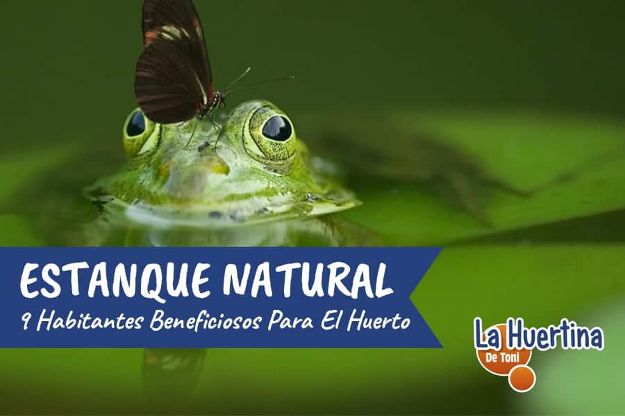 Animales que Pueden vivir en la Charca de la Huerta