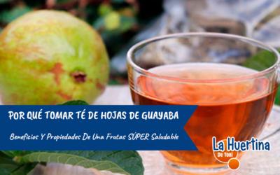 Cómo preparar té de hojas de Guayaba: Beneficios y propiedades.