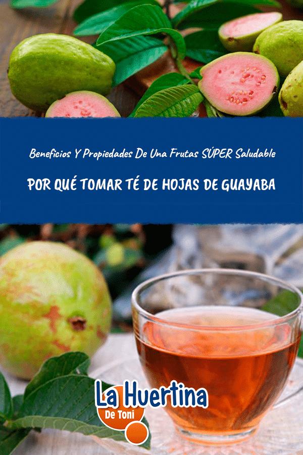 Te de hojas de guayaba y sus beneficios