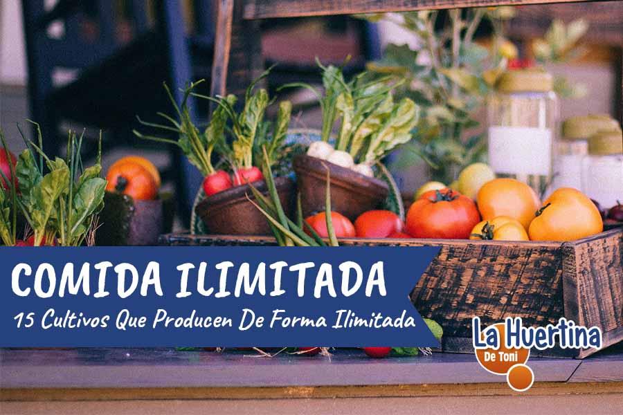 15 cultivos que producen de forma ilimitada