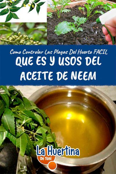 aceite de neem para plantas