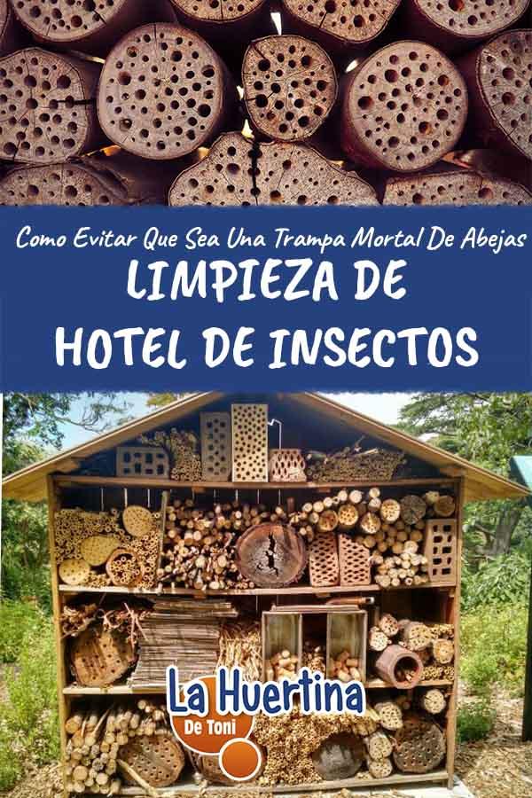 como evitar que tu hotel de insectos sea una trampa, limpieza y mantenimiento