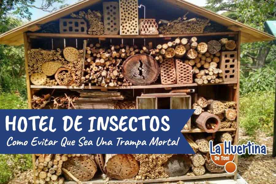 como evitar que tu hotel de insectos sea una trampa mortal