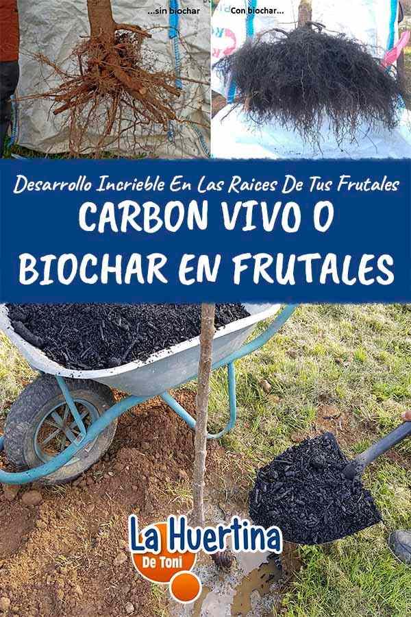 Carbón en frutales abono