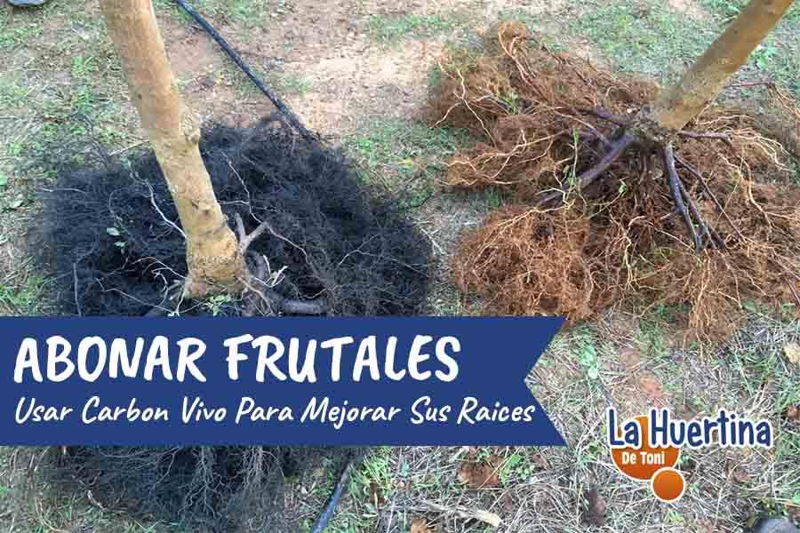 como abonar frutales con biochar o carbón