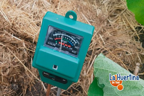 como medir el ph del suelo casero